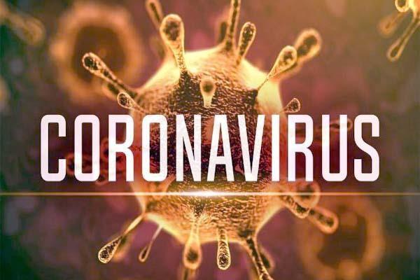 Navidock bình ổn giá, không để thiếu hàng hóa trong mùa dịch Corona